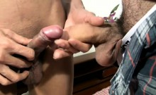 Brunette ladyboy is sucking and jerking cock till cumshot